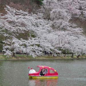 臥竜公園(がりゅうこうえん)長野