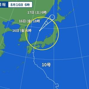 台風10号~  境内の朝顔・・・