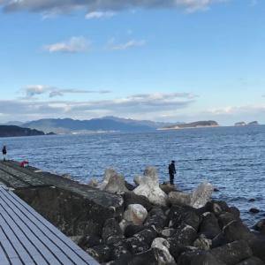 水温が下がり始めた四国沿岸!?