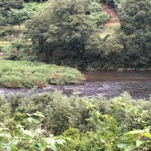 増水前に河川チェックを in 勝浦川
