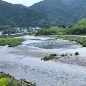 平水になった勝浦川