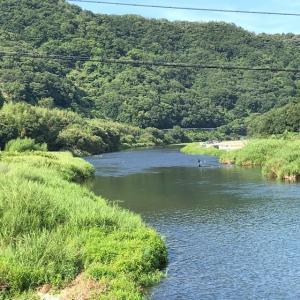 爆笑 鮎の友釣りin勝浦川