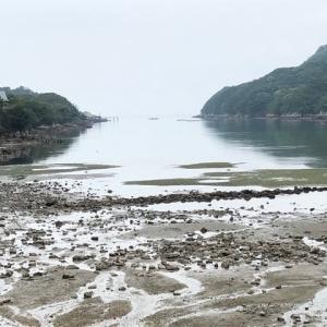 豆アジ釣り・・・ファミリーフィッシングだ〜!?