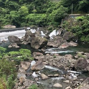 勝浦川のアユ釣り!?
