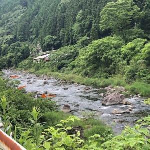 勝浦川の休日のアユ釣りは??