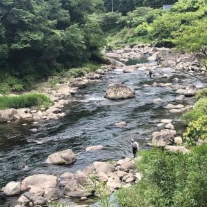 勝浦川のアユ釣り情報!?