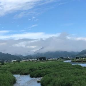 勝浦川のアユ釣り