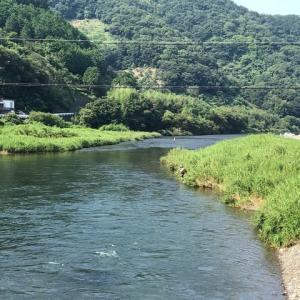やっと例年の夏になったかin勝浦川!?