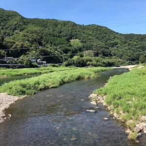 炎天下のアユ釣りin勝浦川