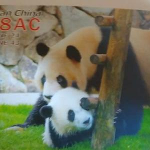Buro 経由で届いた QSL card BY8AC ( China )