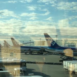 横浜&東京上陸中!旅のお供に、今回はこちら♬