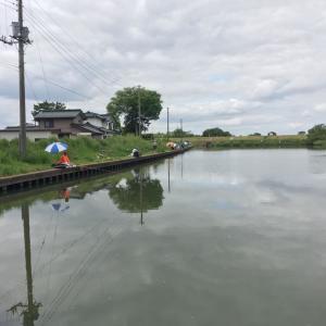 四ツ谷池釣行 苦しい釣果
