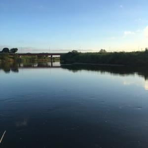 小貝川釣行 減水始まる!