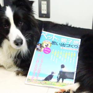 【ペットと親子旅】表紙になったライト!★デビュー(*´ω`pq゛