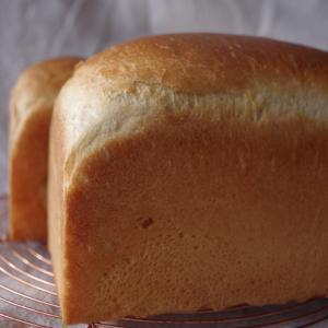 ポーリッシュ種で食パンと嬉しいこと。