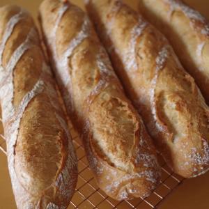 オススメのハードパン用小麦粉