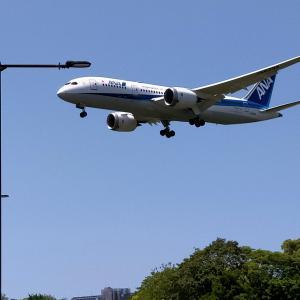 【福岡旅2021.8】飛行機を見に福岡空港そばの大井中央公園へ