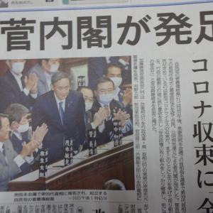 拝啓・菅義偉内閣総理大臣さま