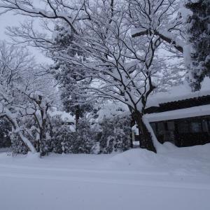 年始めに観測史上最高の雪