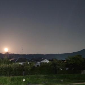 京都東山 いざよい(十六夜)の月
