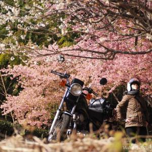 L.L.Bean ワックス コットン ジャケット☆バイク用としての着用レビュー