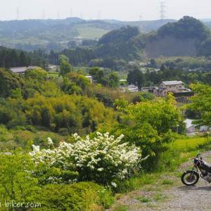 里山カフェ・ツーリング☆初夏のお花とバイク写真撮影