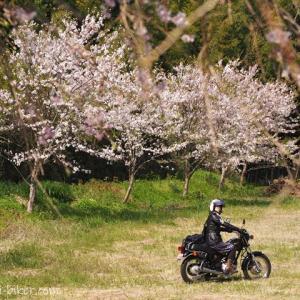 バイクへのカメラ積載☆ミラーレスを大事に運びたい