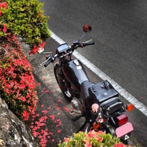 ネット購入したリュックをバイク用バッグとして活用☆YAMAHA SR125