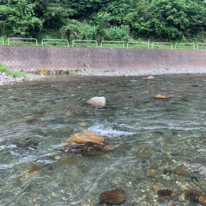 神流川 上野村釣行