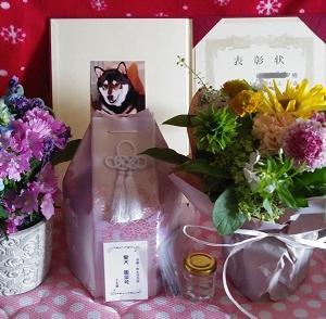 """7/11ひめっち♪~お花届きました♡&""""HANABI""""がリピート(ノ´∀`*)"""