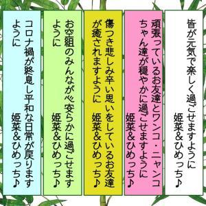動物たちの七夕まつり。~姫菜&ひめっち♪Version♡~Thanks for ゴン兄さん♪♡