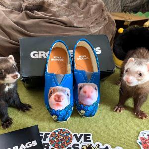 お顔でーーんなお靴…笑 撮影♫