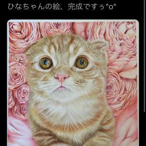 甘えん坊猫のティノちゃん動画付き! ひな子ちゃん描いてもらいました♪