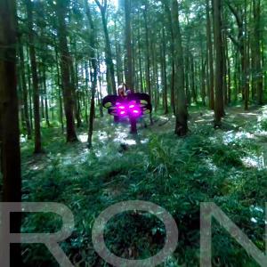 嵐山渓谷 4K GoPro -FPVドローン・マイクロドローン
