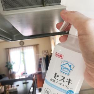 夏だ掃除だ、ダイソー・セリアのセスキ炭酸ソーダだ!