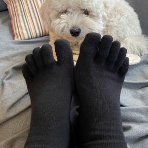 5本指靴下、足指体操しよう!