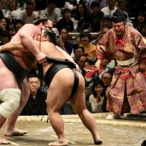 何でもありのルールで全ての格闘家がぶつかりあったら力士が最強だという事実