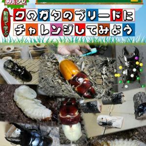 電子書籍『100円SHOPの商品でクワガタのブリードにチャレンジしてみよう』出版のお知らせ