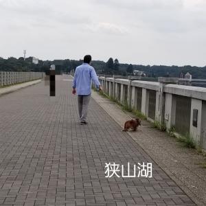 10/3(土)パパ運転でお出掛け 狭山湖&所沢航空公園