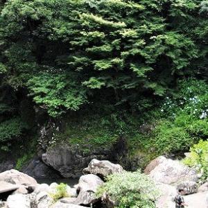 蕨野棚田と見帰りの滝