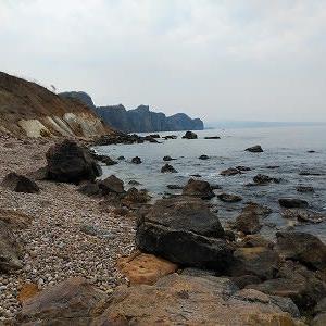 海岸のお散歩
