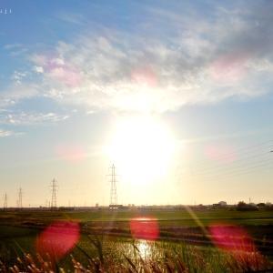 加茂市・冬鳥越スキーガーデン〜青海神社〜加茂山公園