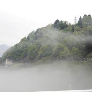阿賀町・たきがしら湿原