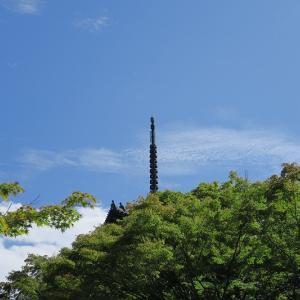 真如堂の三重塔と萩