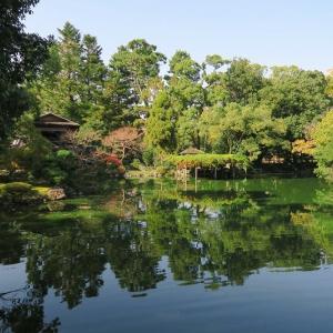 京都御苑の紅葉もよう