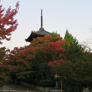 真如堂、そうだ 京都、行こう。