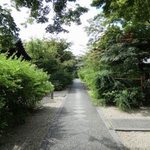 梨木神社の萩開花