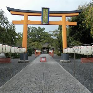平野神社の彼岸花、モスキート