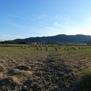 北嵯峨野の田園風景