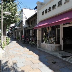 寺町通り、藤袴咲く頃